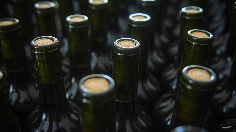 Qué vinos y espumantes se pueden comprar en la subasta de AFIP