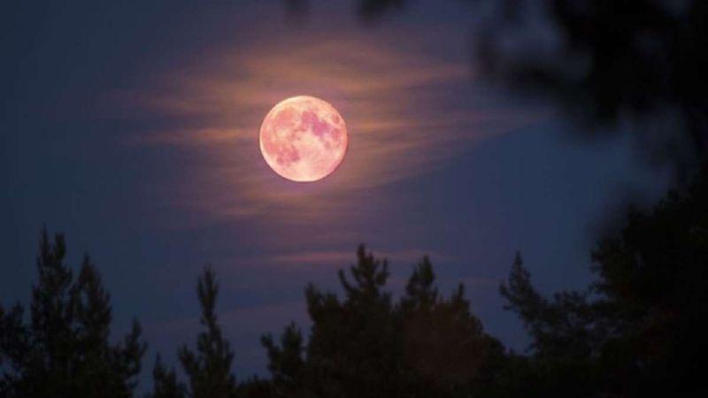 """Se viene la """"superluna"""" rosa de abril: cuándo y desde dónde se podrá ver"""