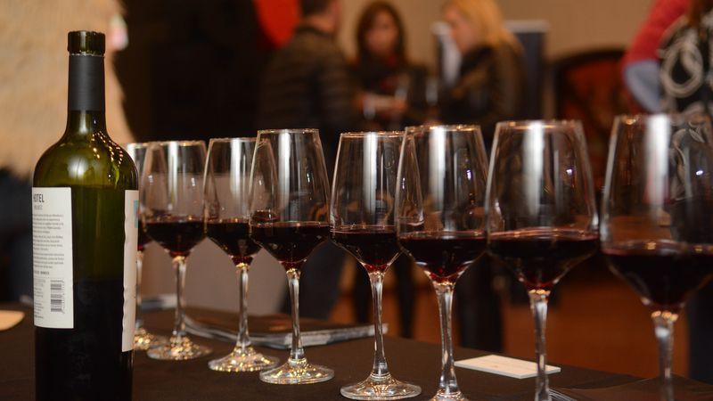Los diez vinos más premiados del último año