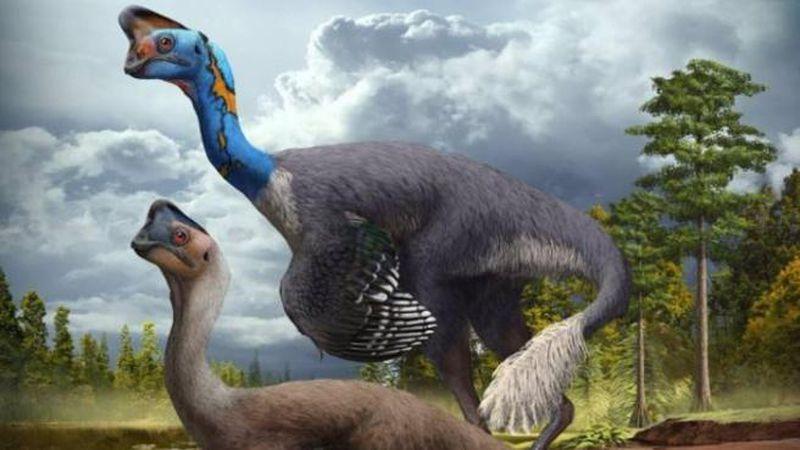 Descubren el primer dinosaurio del mundo que estaba incubando y encuentras a sus crías fosilizadas