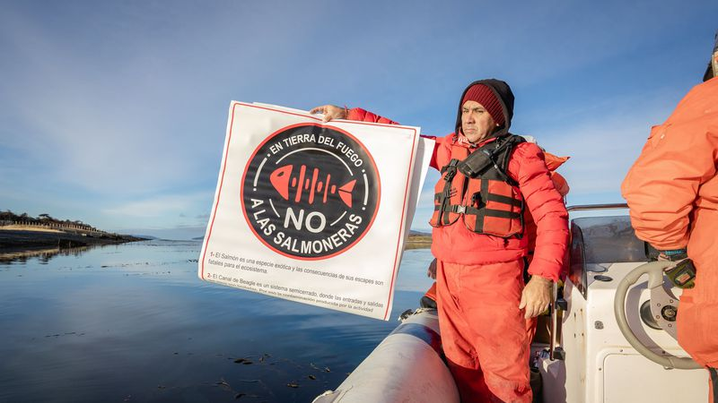 Con una ley, Tierra del Fuego prohibió la salmonicultura en aguas del Canal Beagle