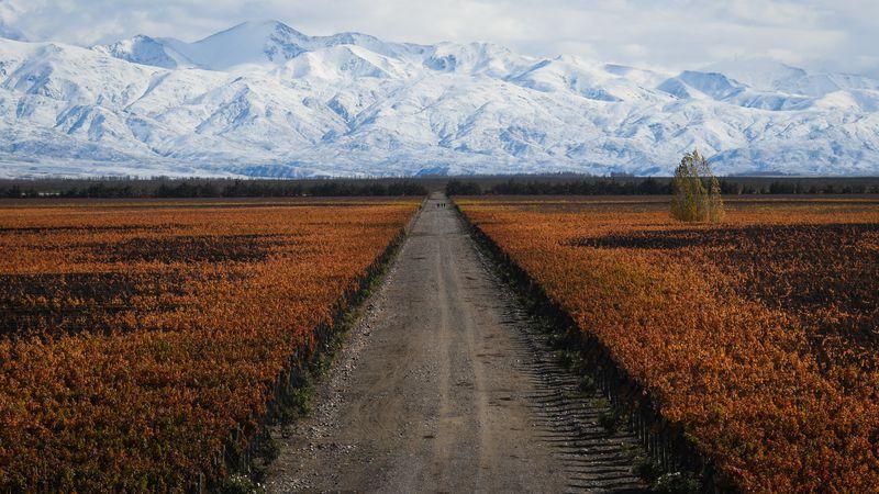 En Mendoza, marzo fue más frío y lluvioso que otros años: cómo seguirá el otoño