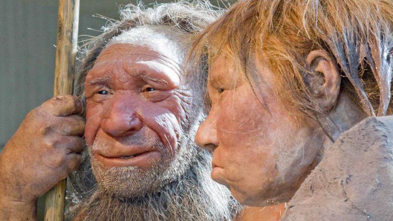 Un estudio reveló que los neandertales siberianos que vivieron hace 60.000 años llevaban una dieta variada