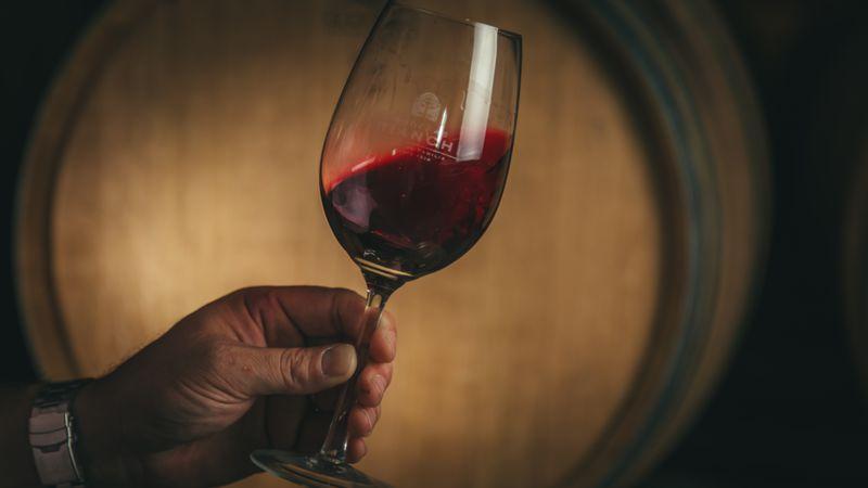 Segunda cata virtual con cinco vinos de Bodegas López