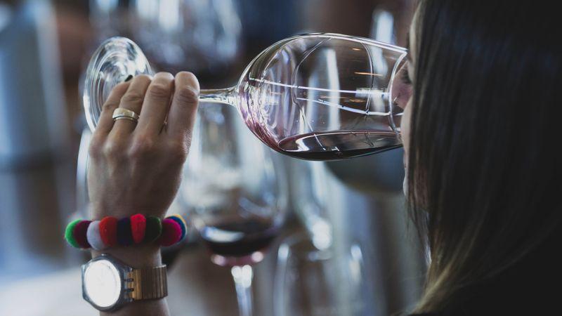 Día Mundial del Malbec: diez nuevos vinos para celebrar con el varietal emblema del país