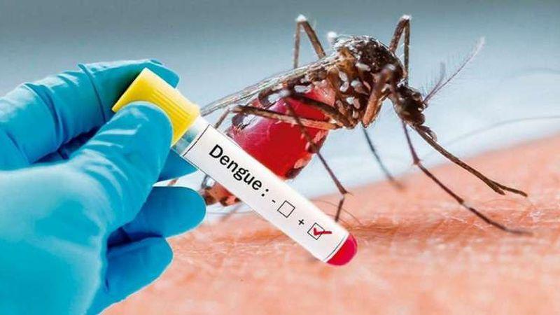 Los contagios por dengue en la Argentina ya son de 54.870, el mayor registro histórico en el país