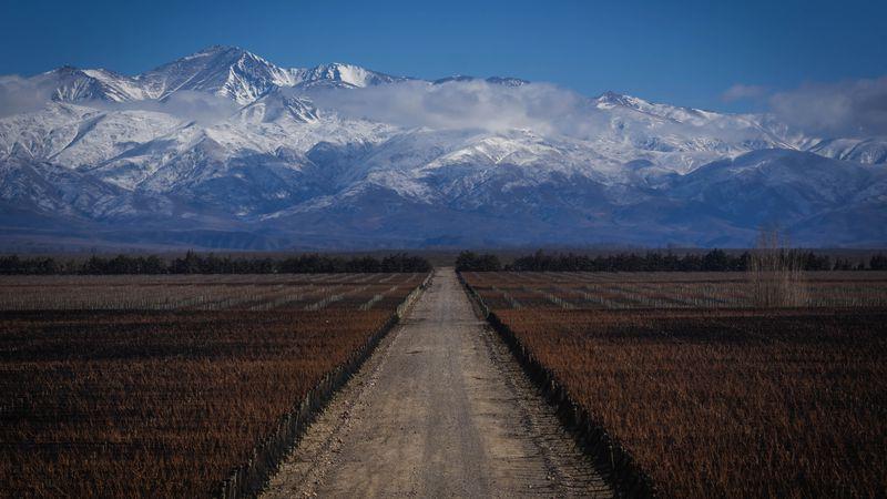 El paisaje vitivinícola y el avance de los barrios