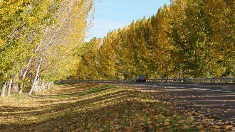 Pronóstico: el miércoles habrá un leve ascenso de la temperatura en Mendoza