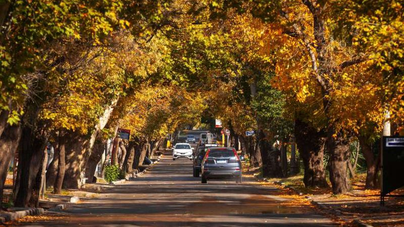Pronóstico: así estará el tiempo este jueves en Mendoza, ¿qué pasará el fin de semana?