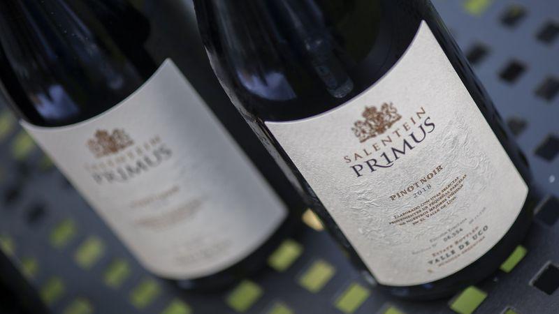 Cumple 20 años el vino mendocino que se sirvió en la boda real de Máxima Zorreguieta