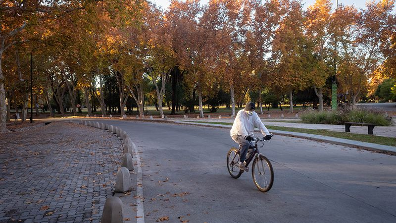 Mendoza en fase 1: aumentó un 23% la movilidad en zonas residenciales y bajó un 75% en parques