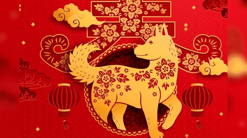 El perro en el horóscopo chino: significado y características