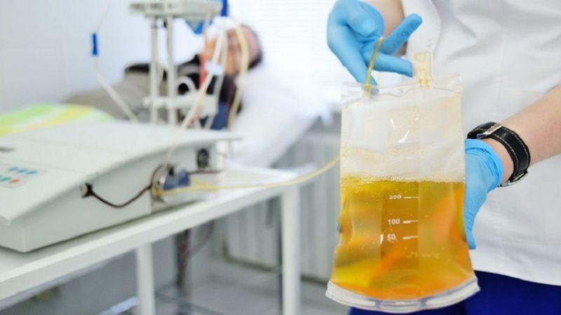 COVID-19: paso a paso, el proyecto local que prevé usar plasma de pacientes recuperados