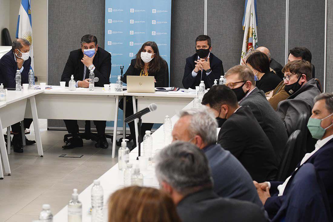 Ana Maria Nadal, Ministra de salud de Mendoza se presentó en la Legislatura para brindar explicaciones sobre los fallecidos por COVID en la provincia.