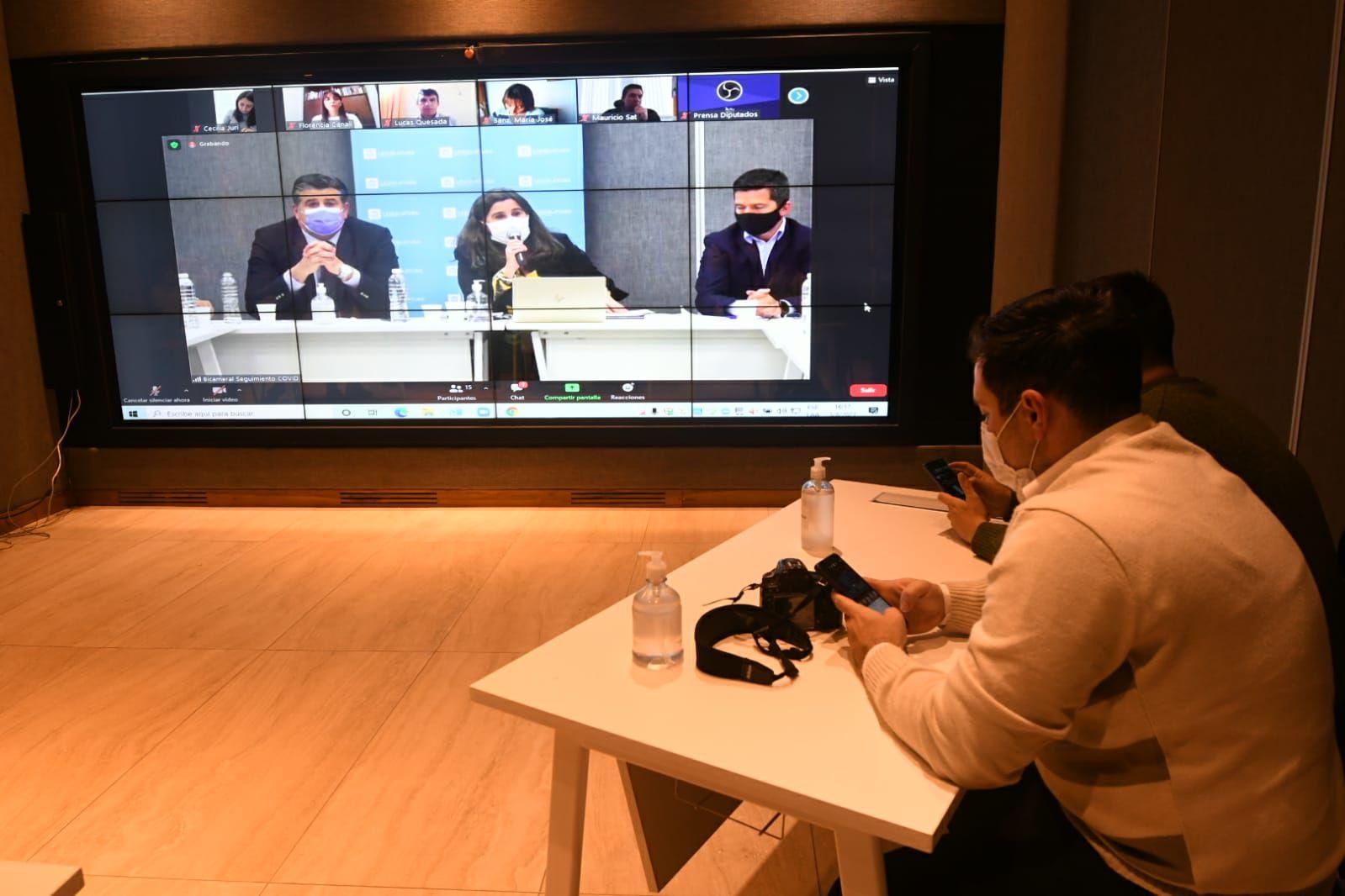 La presentación de la ministra de Salud de Mendoza, Ana María Nadal, se transmitió en circuito interno para la prensa.