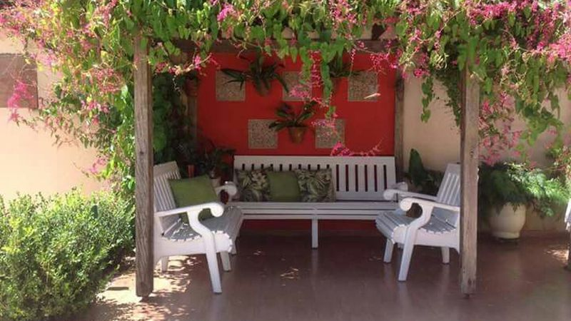 Qué plantas y qué cuidados son necesarios en nuestro jardín bajo el sol ardiente de Mendoza