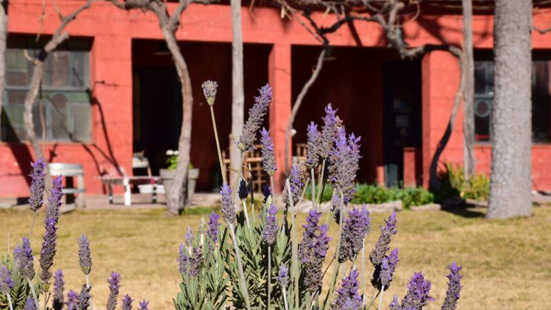 Llega Bodega Hacienda del Plata a Tienda Los Andes